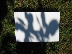 A shadow on a paper on the grass