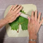 Steps for Making Clay Leaves