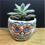 Ceramic Sugar Skull Planter